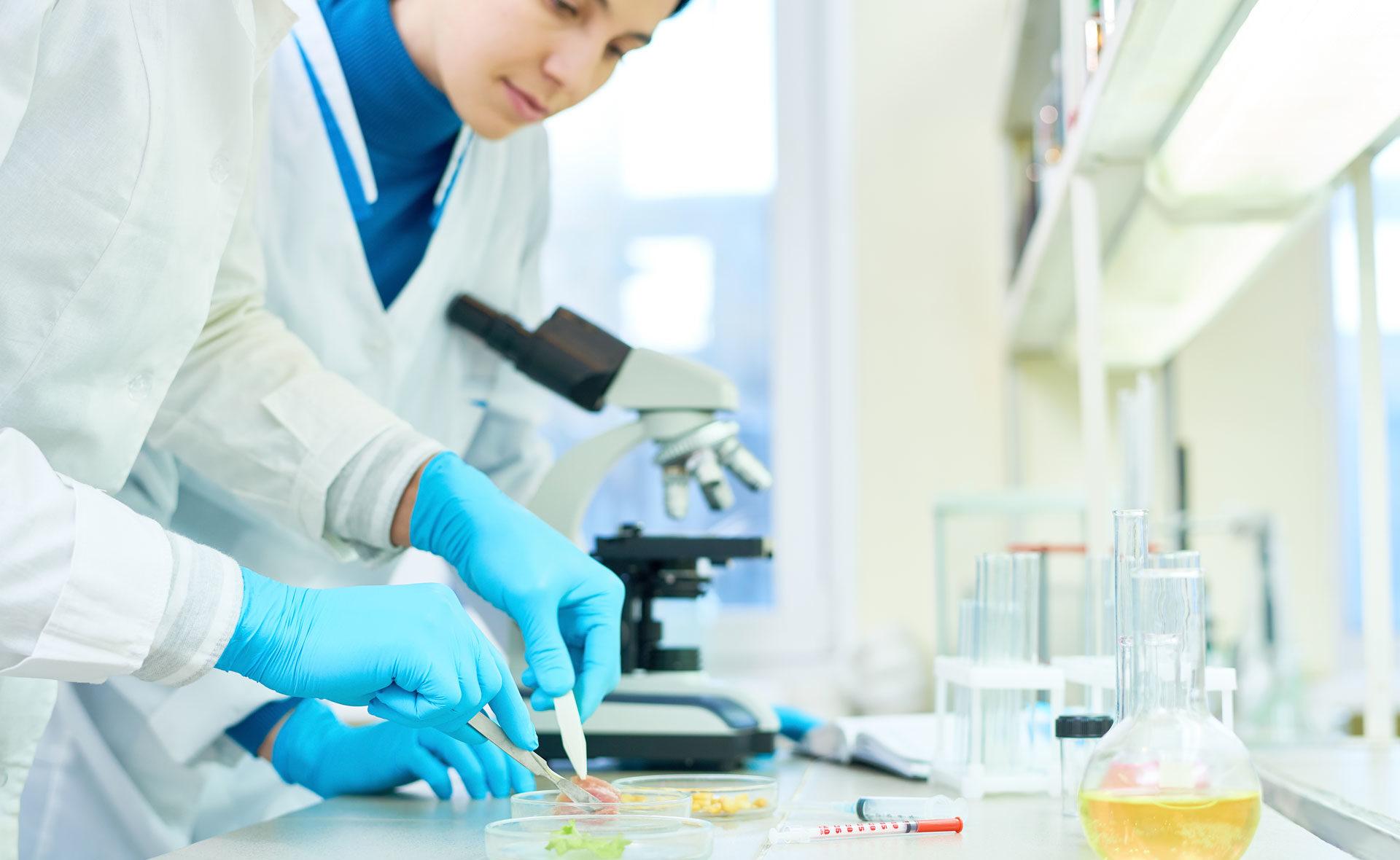 Fotografía de Control de calidad, laboratorio, alimentos, calidad, probetas, comida, microscopio, ciencia