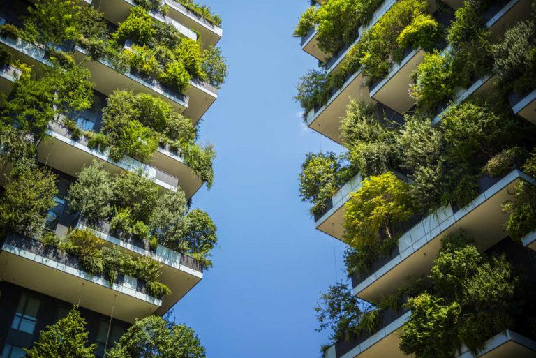 sostenibilidad banca responsable verde bbva recurso