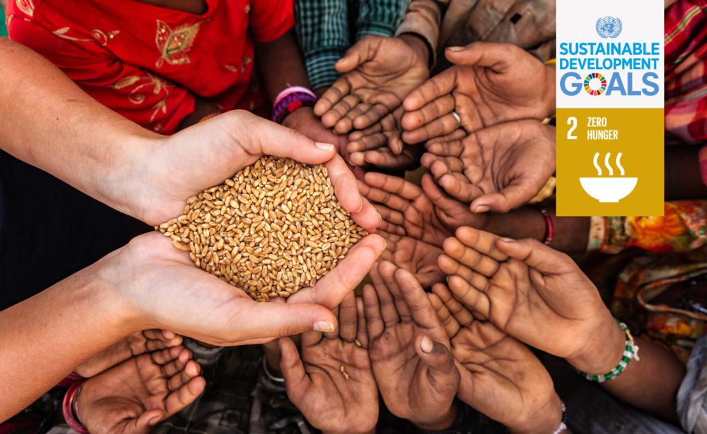 ODS2_fin_pobreza_bbva_recurso