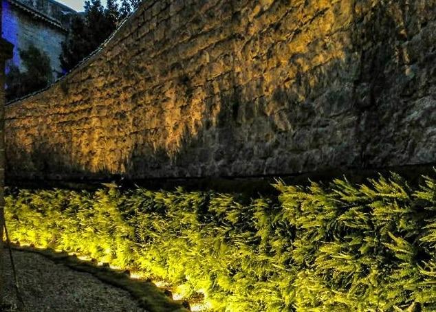 Catedral noche BBVA Temps de Flors