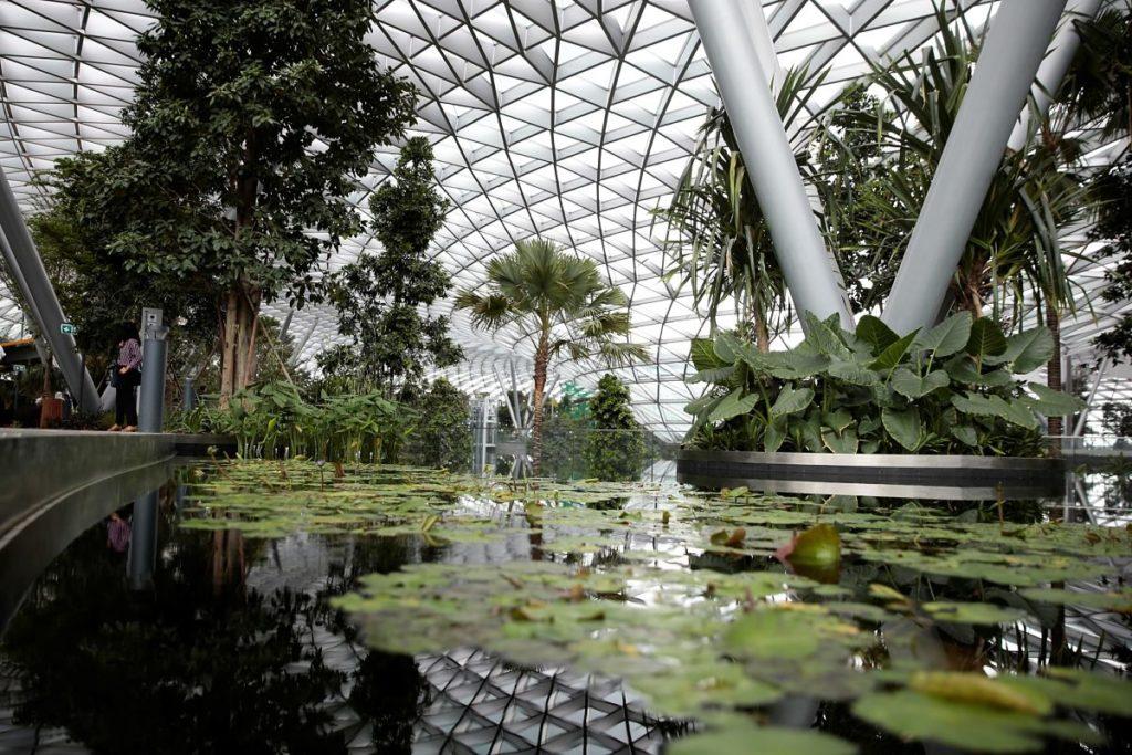 ecologico_-responsable_banca_-sostenible_verde_sostenibilidad_-ods_bbva_recurso
