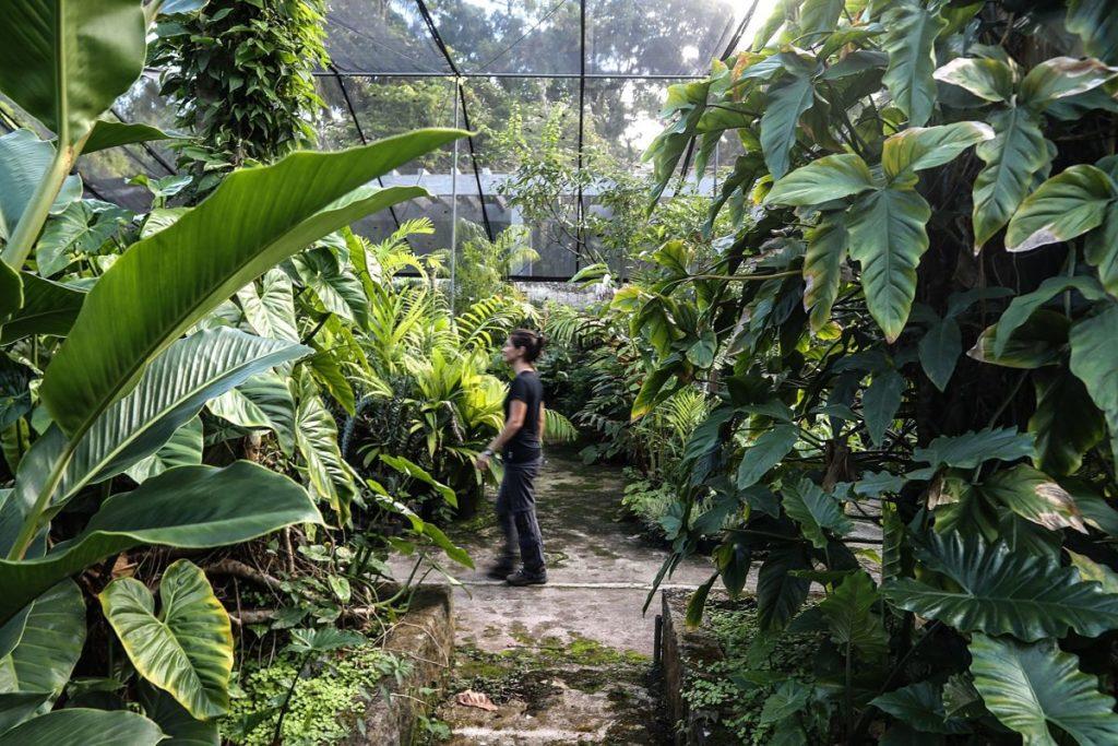 plantas_ecologico_-responsable_banca_-sostenible_verde_sostenibilidad_-ods_bbva_recurso