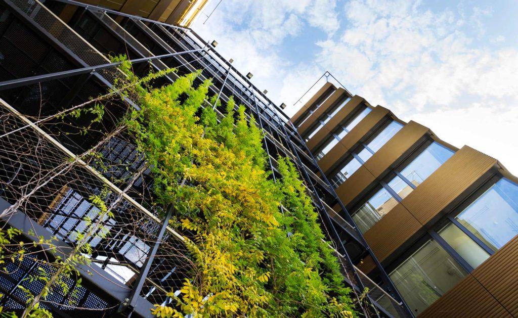 Fotografía de Activos inmobiliarios, edificio, sostenibilidad, plantas, vegetación, verde, ventanas
