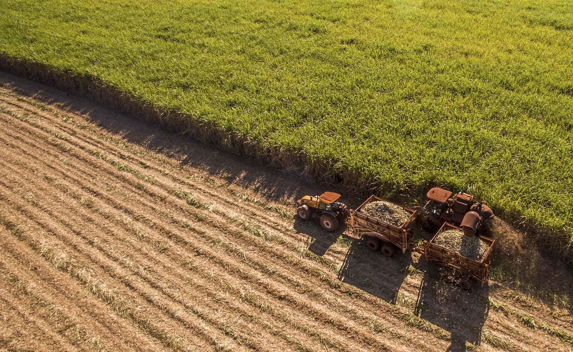 Agricultura_Recurso_BBVA