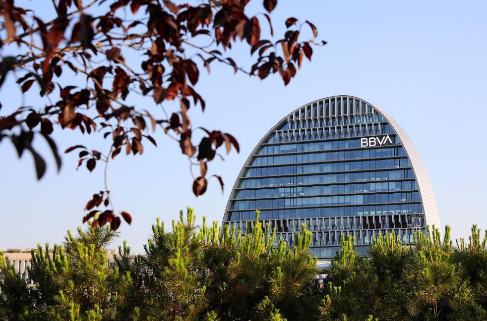 Vela naturaleza nuevo logo BBVA