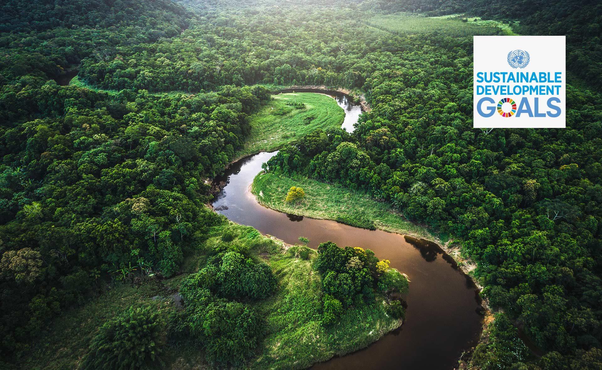 ODS- 17 Objetivos- Desarrollo-Sostenible-BBVA-medioambiente, Compromiso 2030, acuerdo París, NUnidas, INGLÉS
