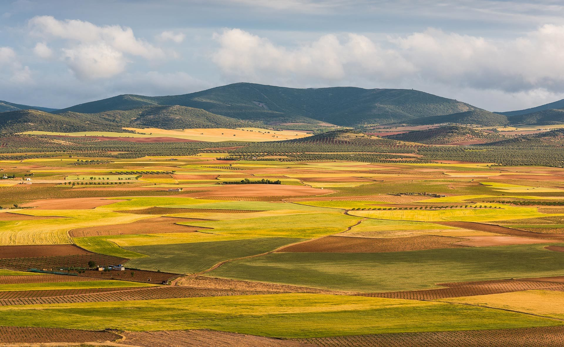 BBVA_Castilla-La Mancha-2505