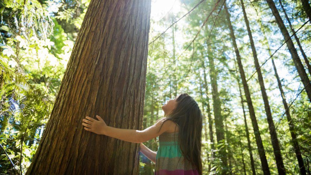 sostenibilidad-empresas-niña-medioambiente-cuidado-planeta-desarrollo-sostenible