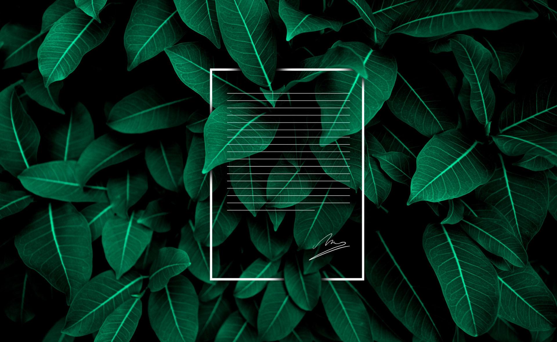 carta-verde- Firma NO original