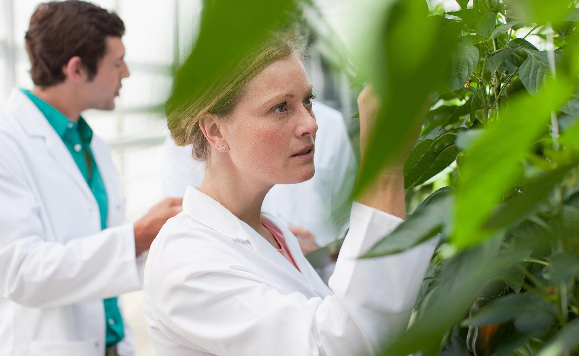 BBVA-ferrer-farmaceutica-acuerdo-sostenible
