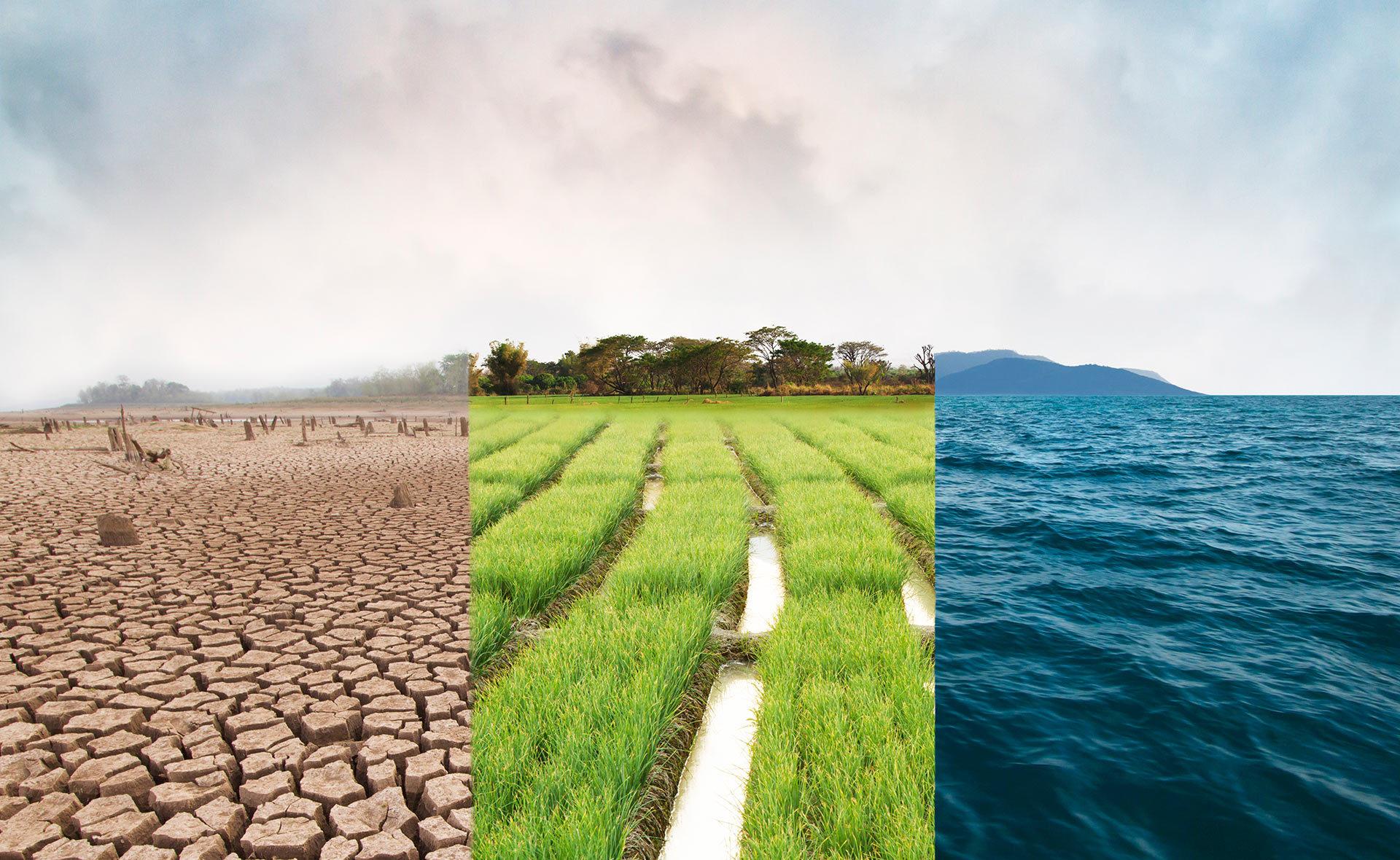 BBVA-acuerdo-por-el-clima-sostenibilidad-acuerdo-cambio-climatico