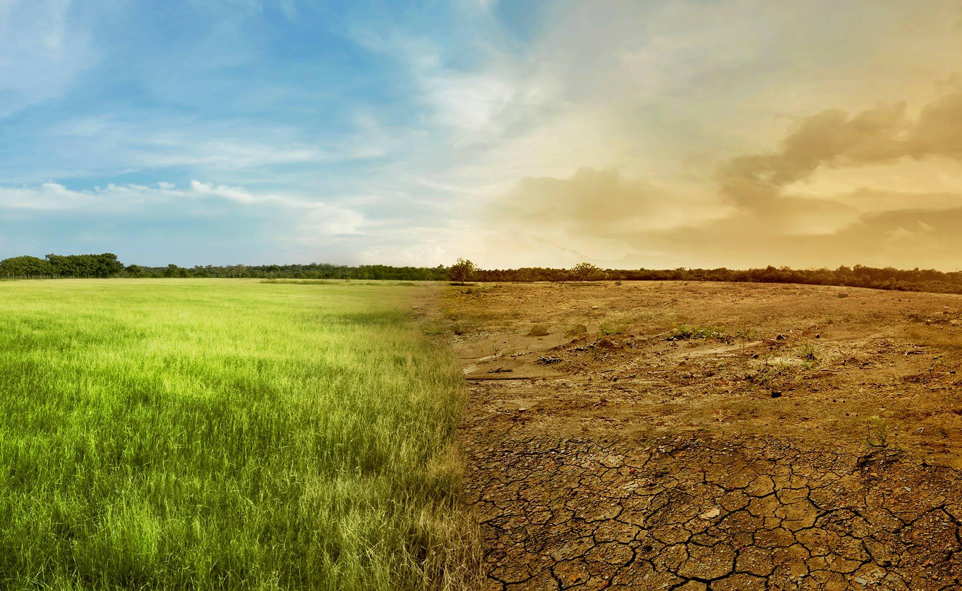 BBVA-calentamiento-global-apertura-sostenibilidad