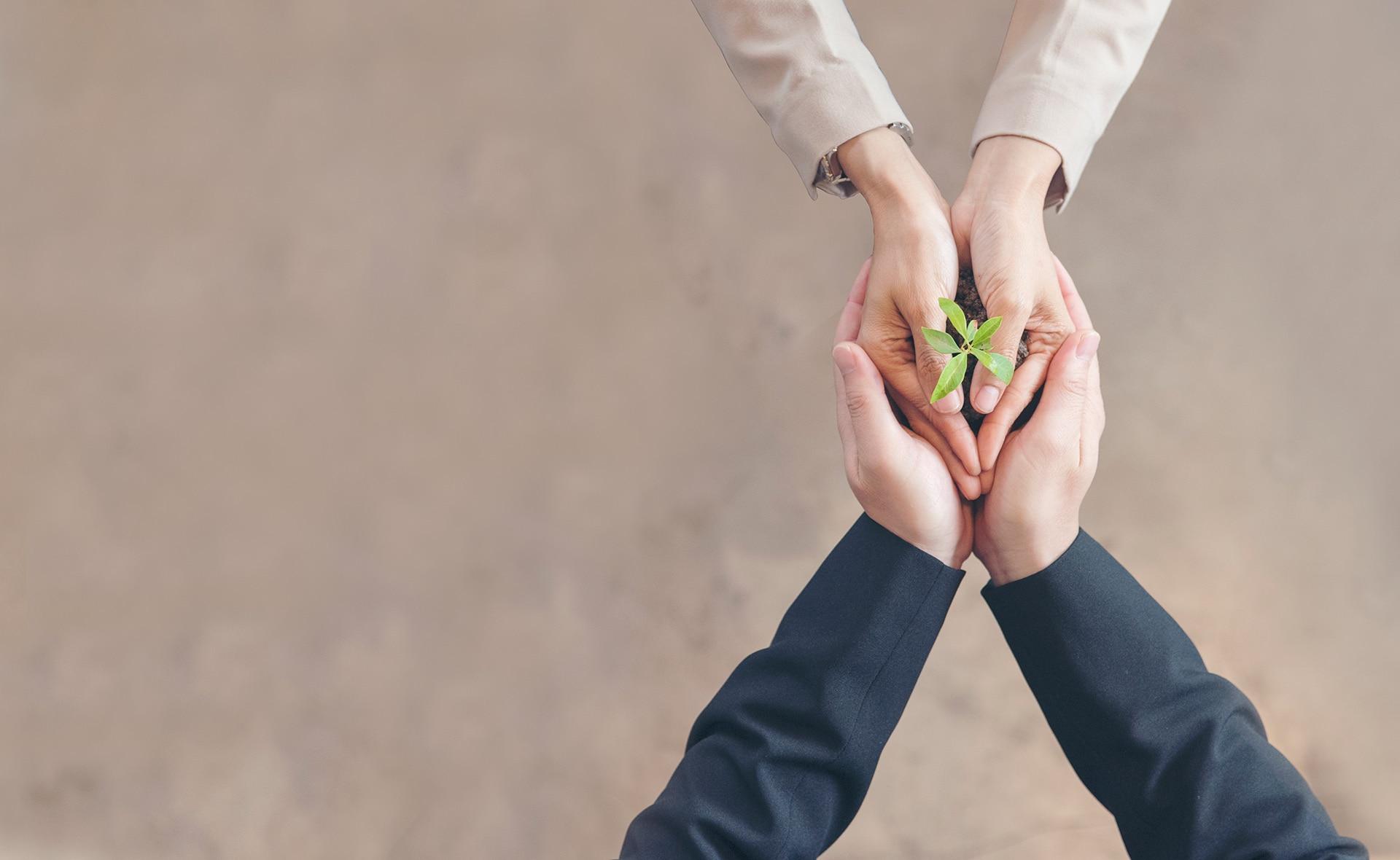 BBVA-Asset-management-premio-inversion-sostenible-banca-