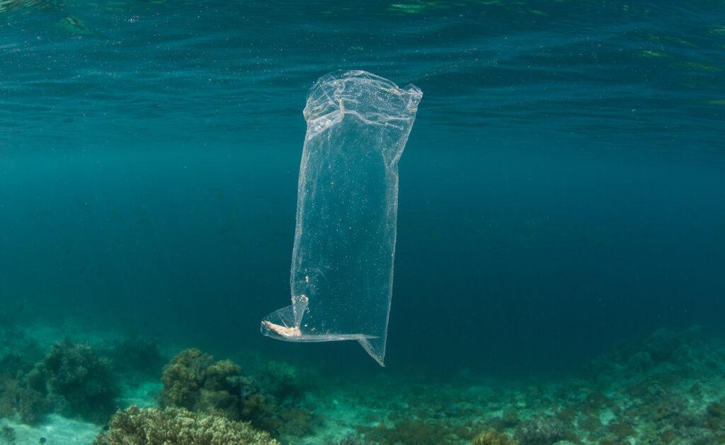 BBVA-bolsa-plastico-desaparecer-reciclaje
