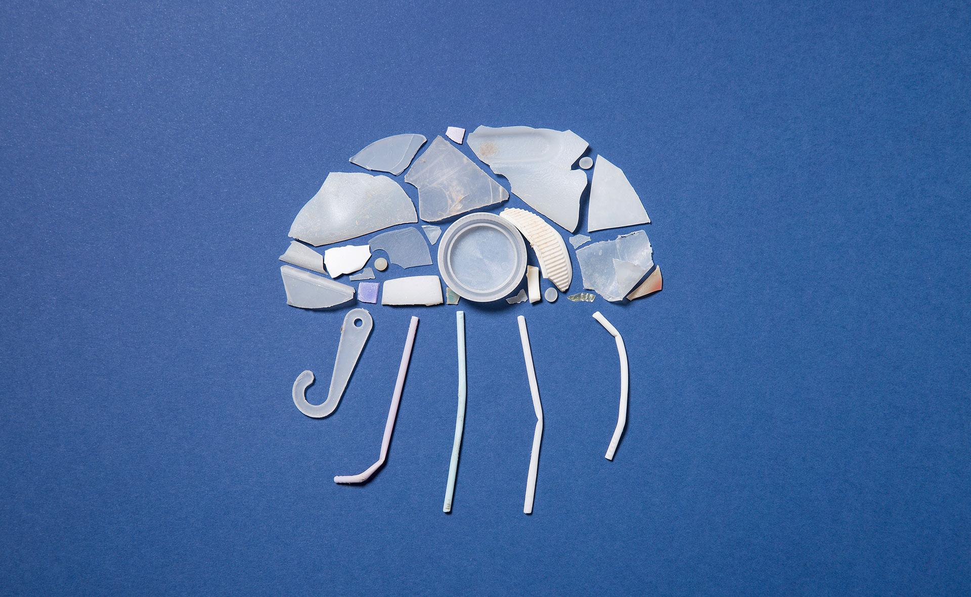 BBVA-escasez-agua-apertura-medusa-animales-plásticos-contaminación-medioambiente-sostenibilidad