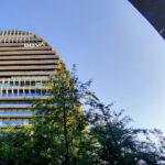 BBVA-gallup-award-2021-apertura-vela-imagen-bbva-árboles-sede-oficial-banco-ciudad-bbva-entidad