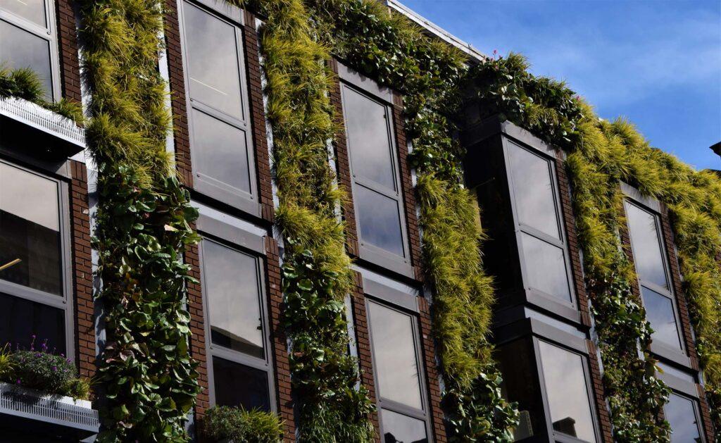 BBVA-innovacion-construcción-sostenible-apertura-edificio-verde-