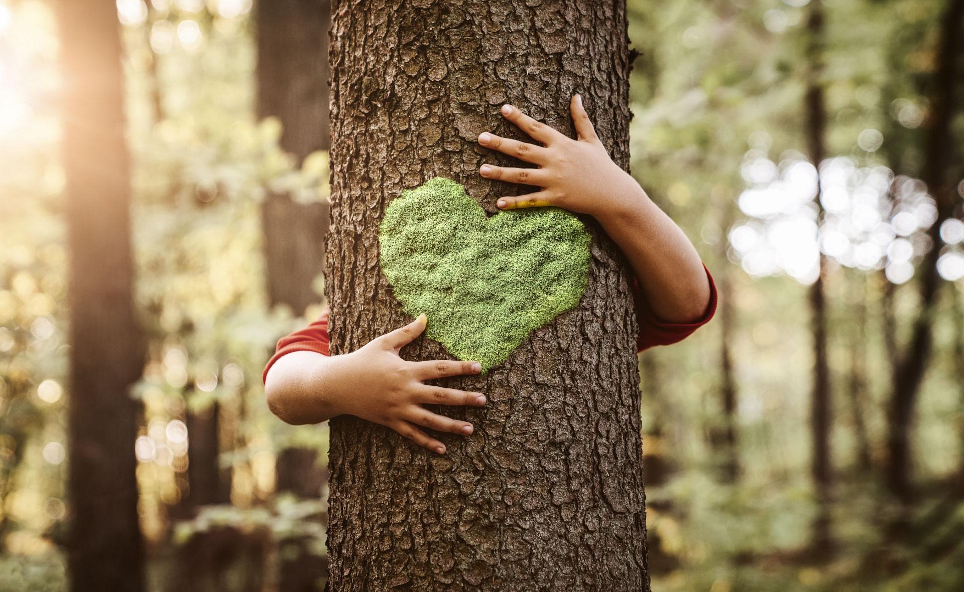 podcast-imagen-sostenibilidad-naturaleza-medioambiente