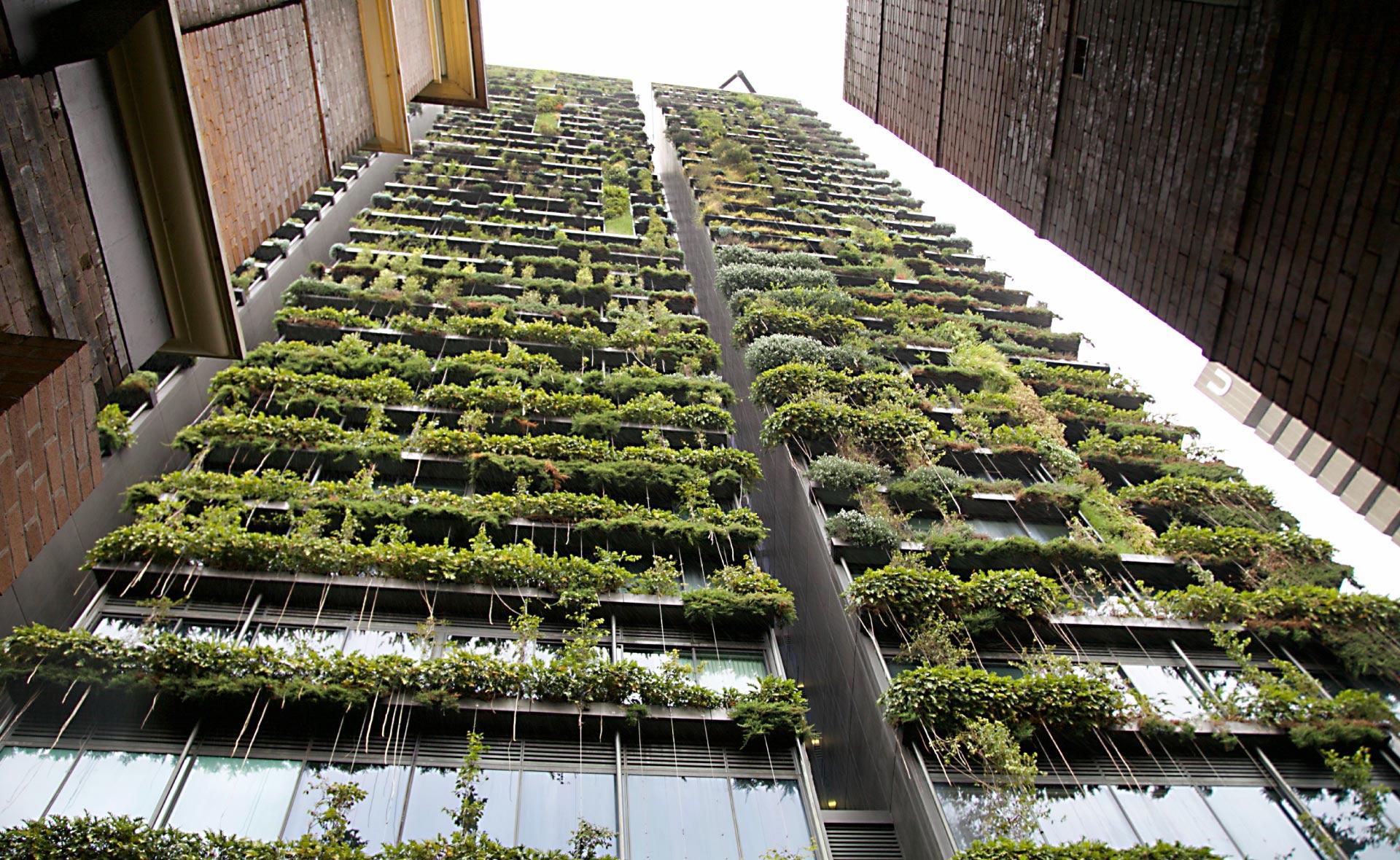 arquitectura_sostenible-bioconstruccion-edificios-