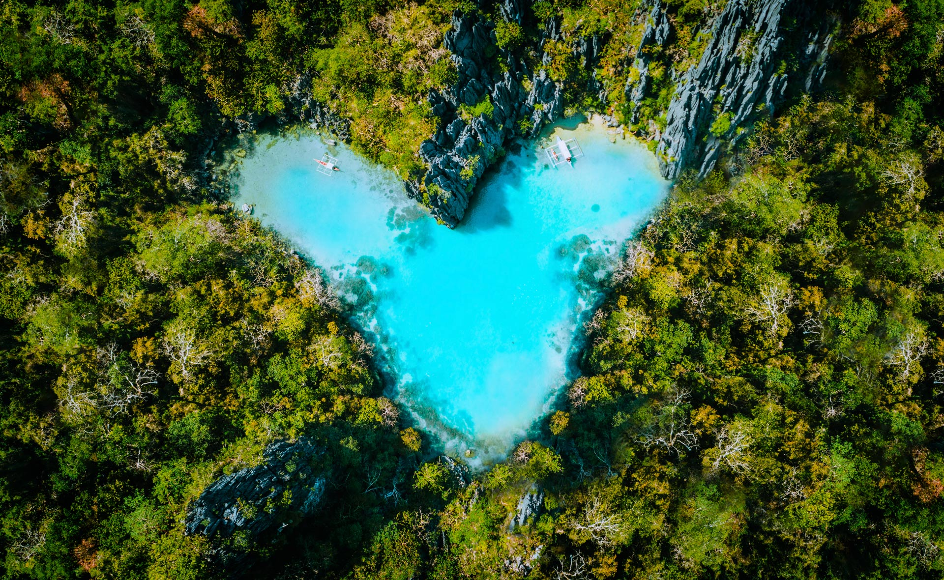 biodiversidad_agua_dulce-corazón-isla-tierra-cuidado-planeta-sostenibilidad-