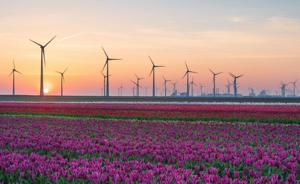 desarrollo_sostenible_1-ods-molinos-energia-medioambiente-cuidado-planeta