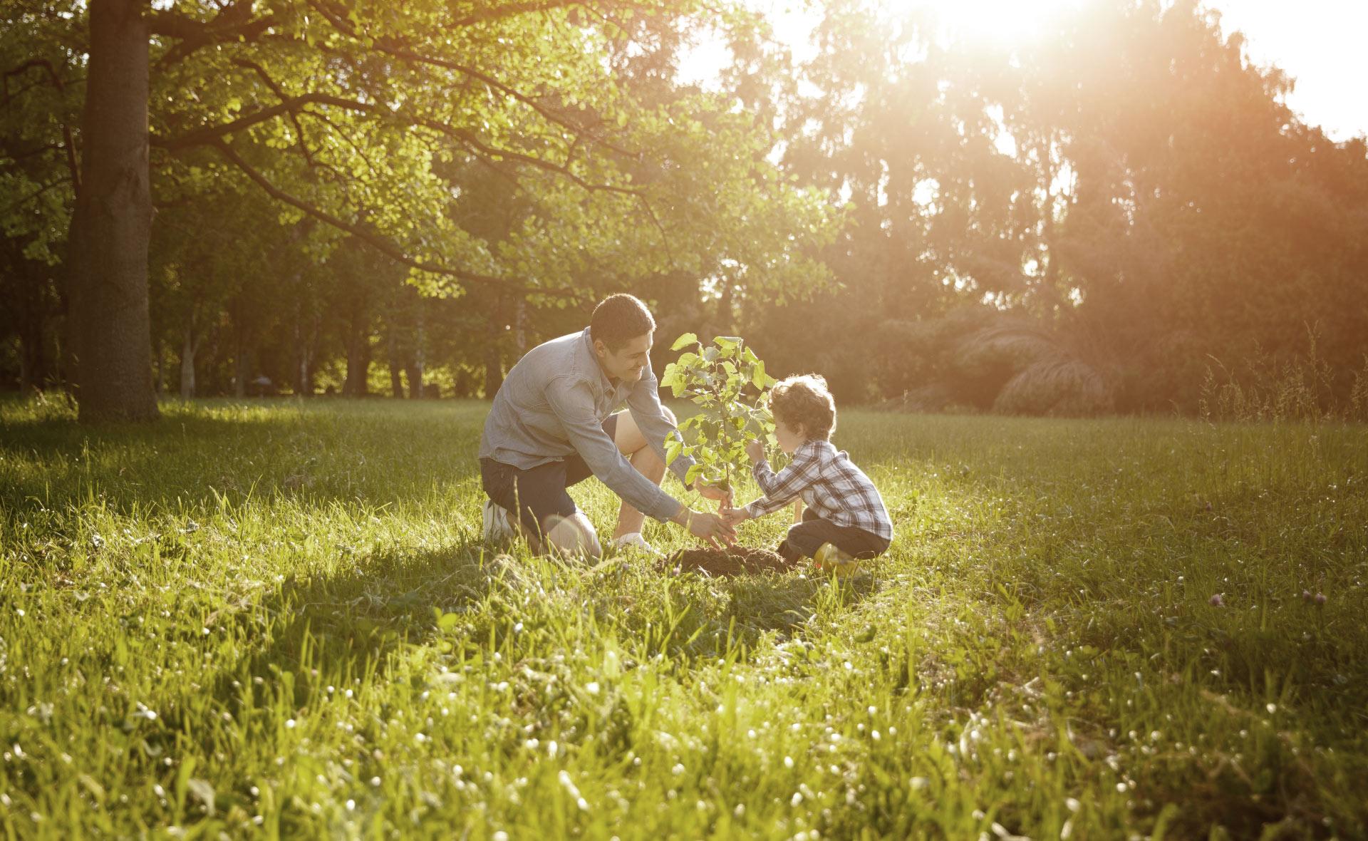 desarrollo_sostenible_apertura-familia-naturaleza-sostenibilidad-ODS