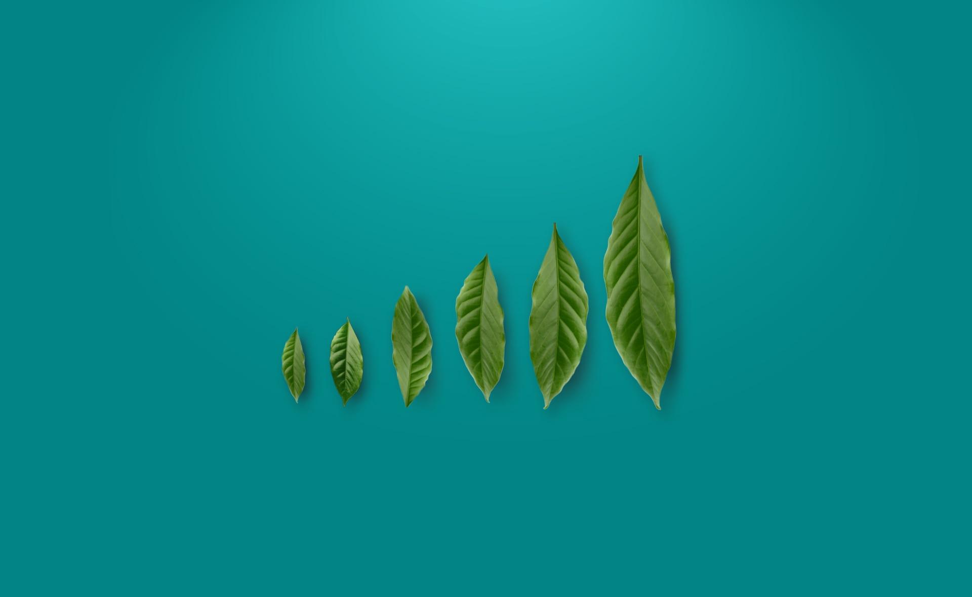 fondo-índice-sostenible- naturaleza-plantas-medioambiente-bbva