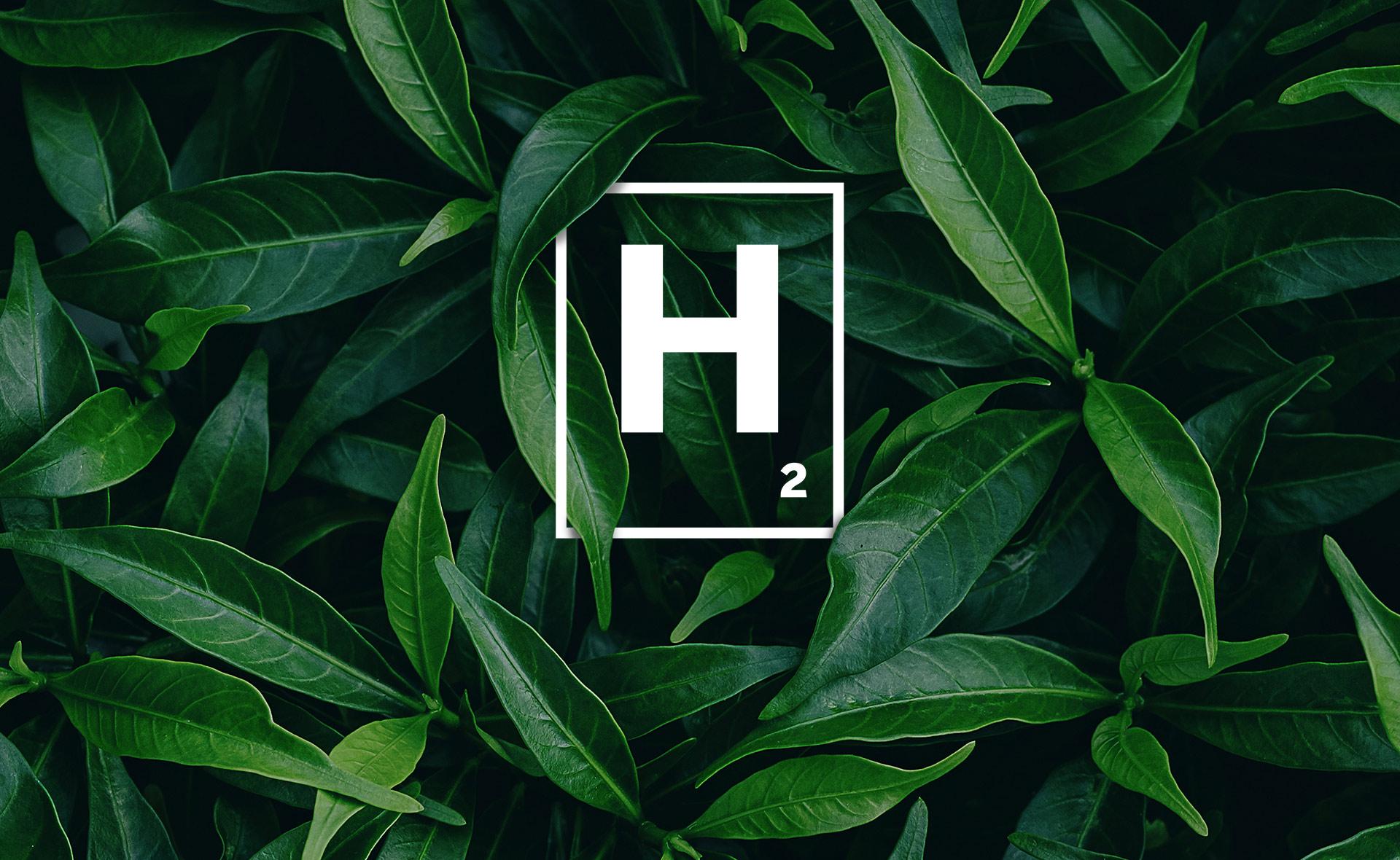 BBVA-Hidrógeno-verde-energia-renovable-sostenibilidad