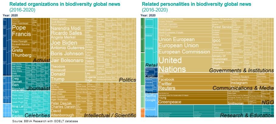 BBVA Research report_Sustainability_related organizations and personalities in biodiversity global news