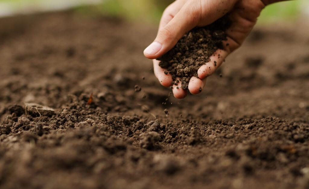 BBVA-agricultura-sostenible-apertura-hambre-cambio-climático-sostenibilidad