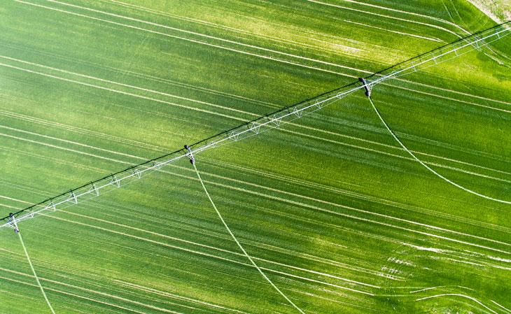 BBVA-campo-agricultura-sostenible-cambio-climático-tierra-sector