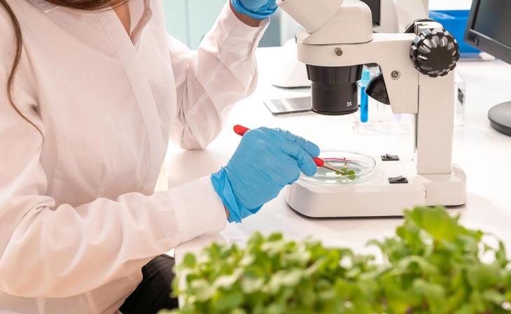 BBVA-investigacion-campo-agricultura-sostenible-int-3