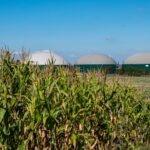 BBVA-biogas-economia-circular-energía solar-energía eólica-valor