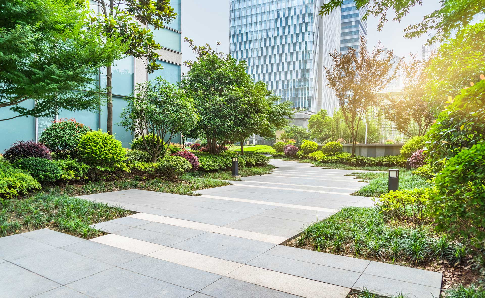 BBVA-certificado-LEED-apertura-ciudad-sostenible-cuidado-entorno-medioambiente-urbanizacion-urbano-vegetacion-
