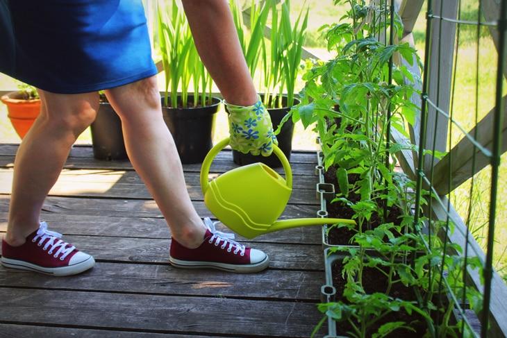BBVA-ciudadanos-ambientales-sostenibilidad-urbano-regadera-plantas-cuidado-planeta-responsabilidad