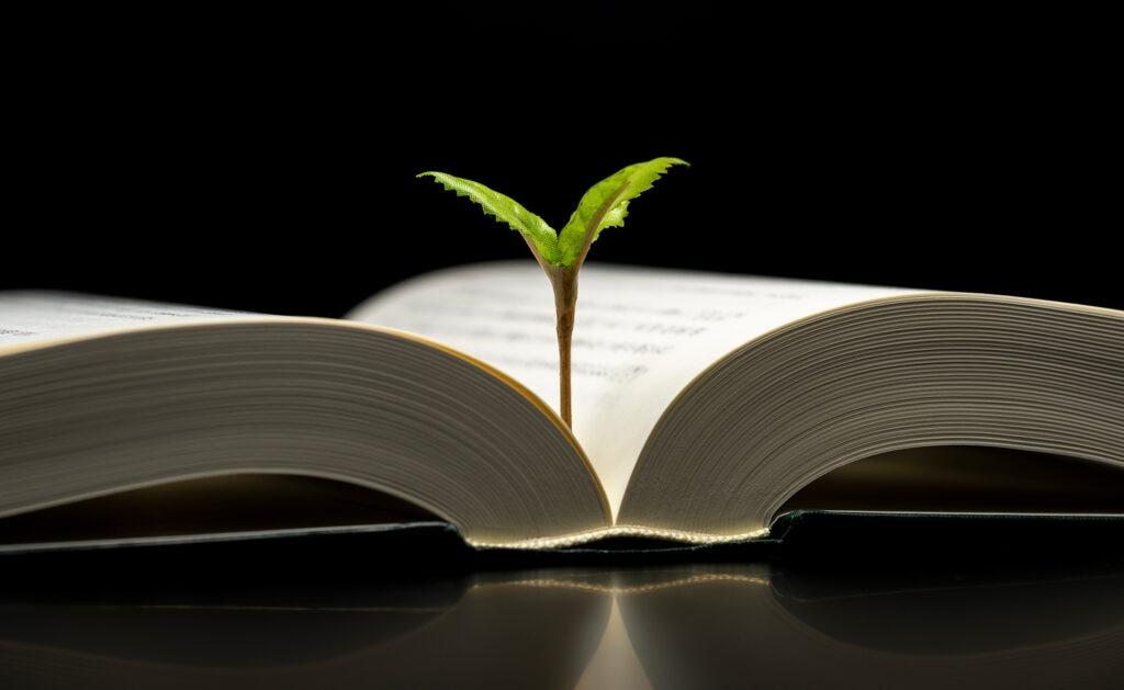 BBVA-dia-internacional-del-libro-lectura-educacion