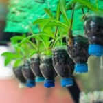 BBVA-reciclado-botellas-plastico-sostenibilidad-apertura