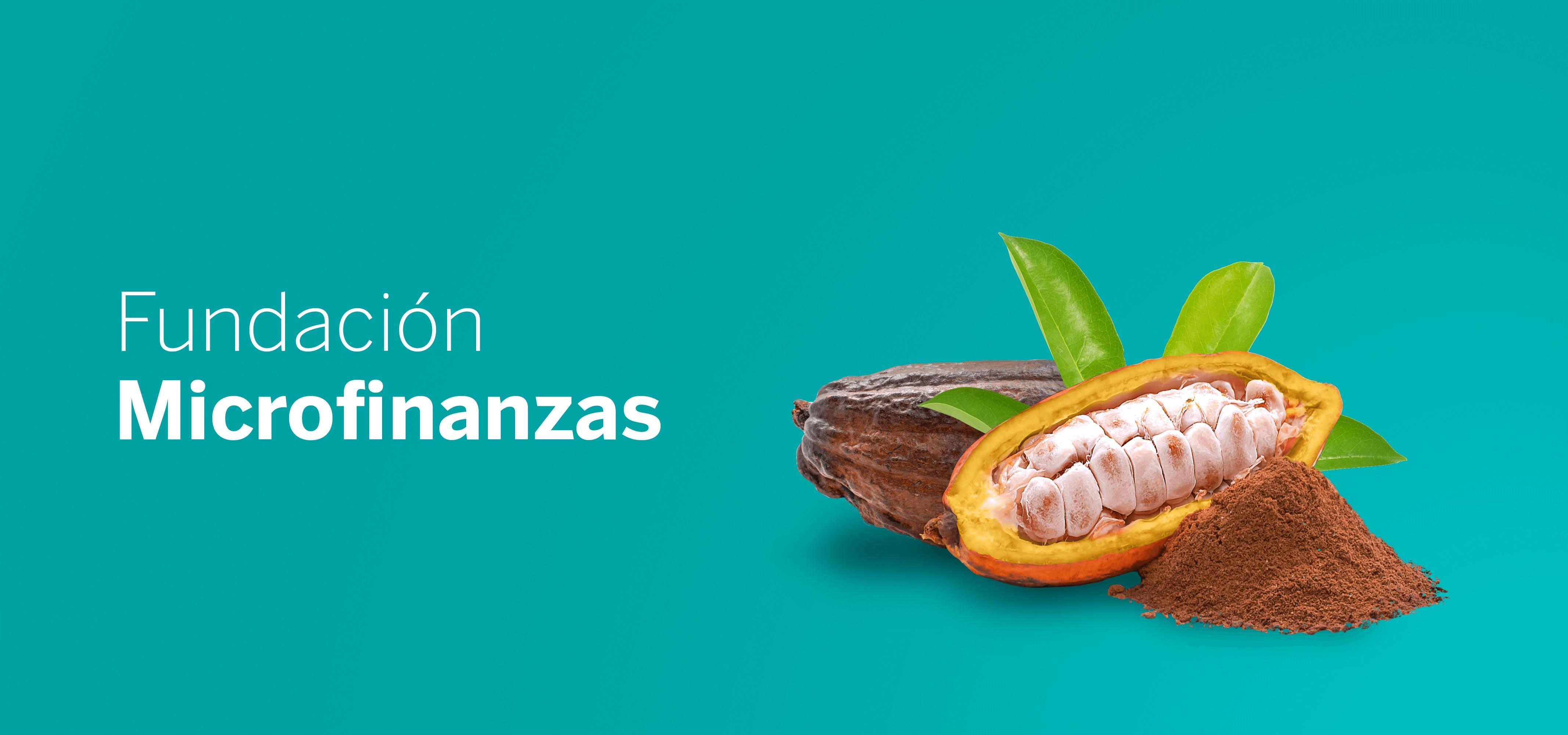 Cintillos__sostenibilidad_bbva_Fundacion microfinanzas