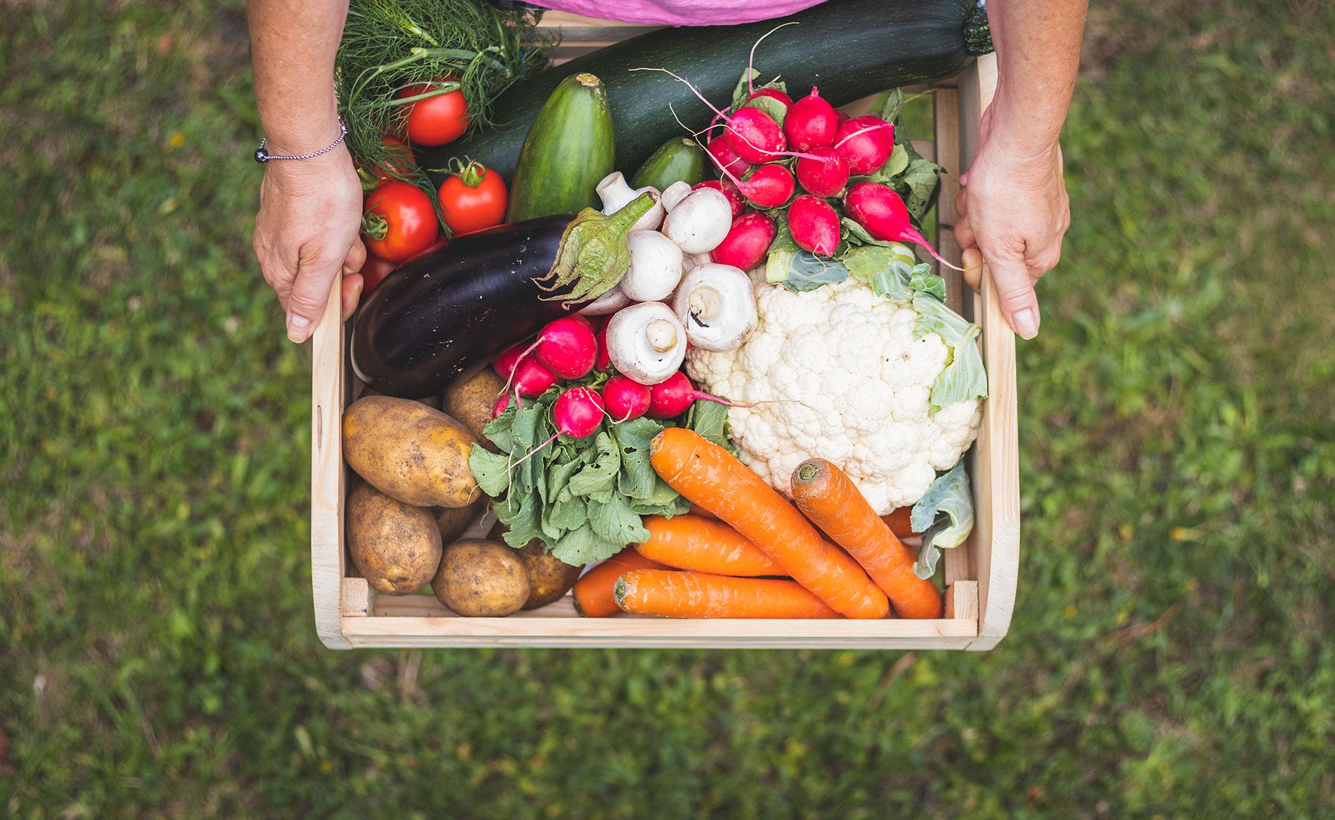 BBVA-comida-proximidad-apertura-alimentos-sostenibles-renovables-productos
