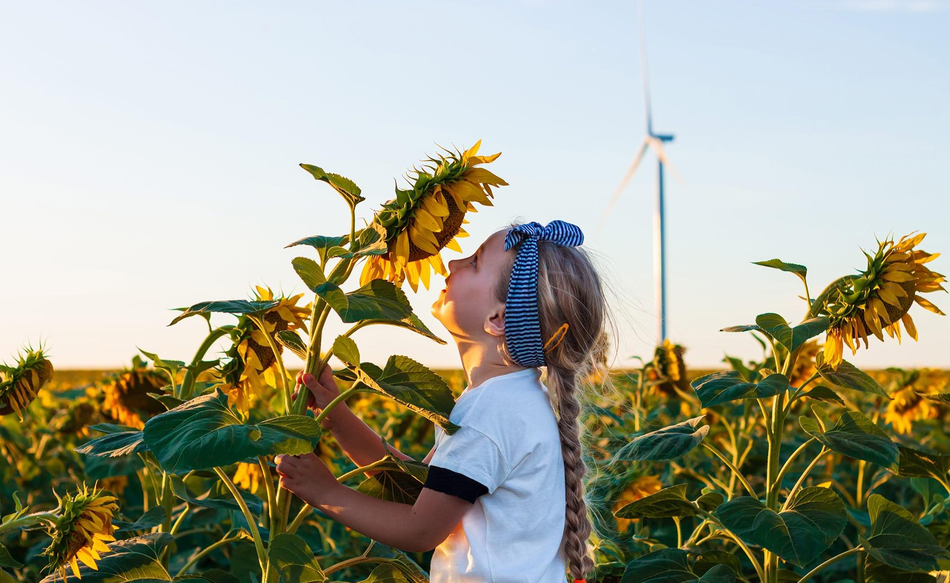 BBVA-diez-paises-transicion-energetica-apertura-sostenibilidad-naturaleza