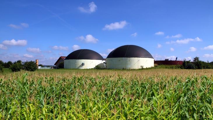 BBVA-energias-renovables-sostenibilidad-biomasa-biogás