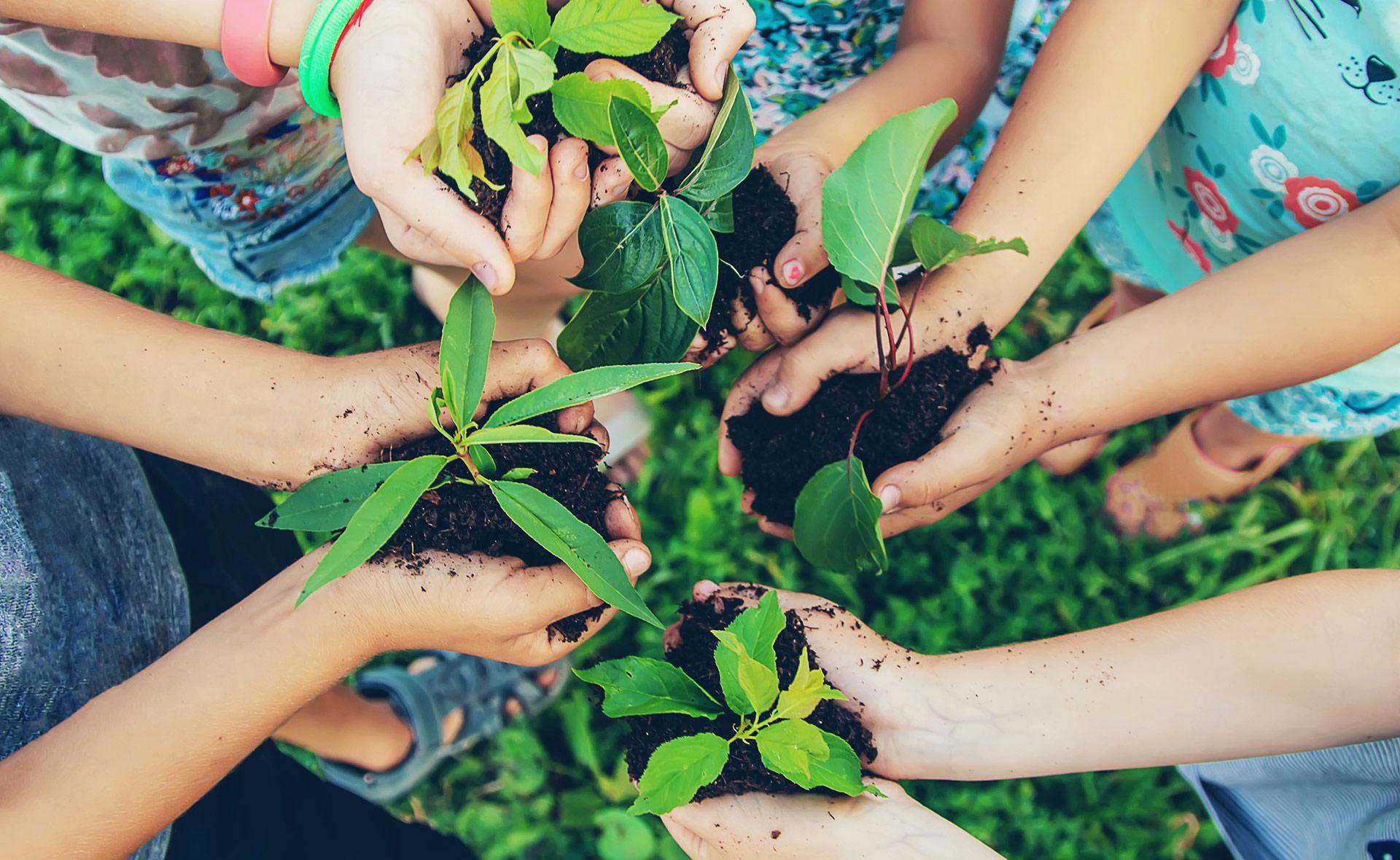BBVA-pacto-verde-desarrollo-sostenibilidad-planeta-cuidado-medioambiente