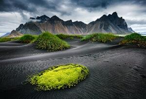 Islandia-energia-limpia-cuidado-pais-campo-naturaleza-medioambiente-arboles-