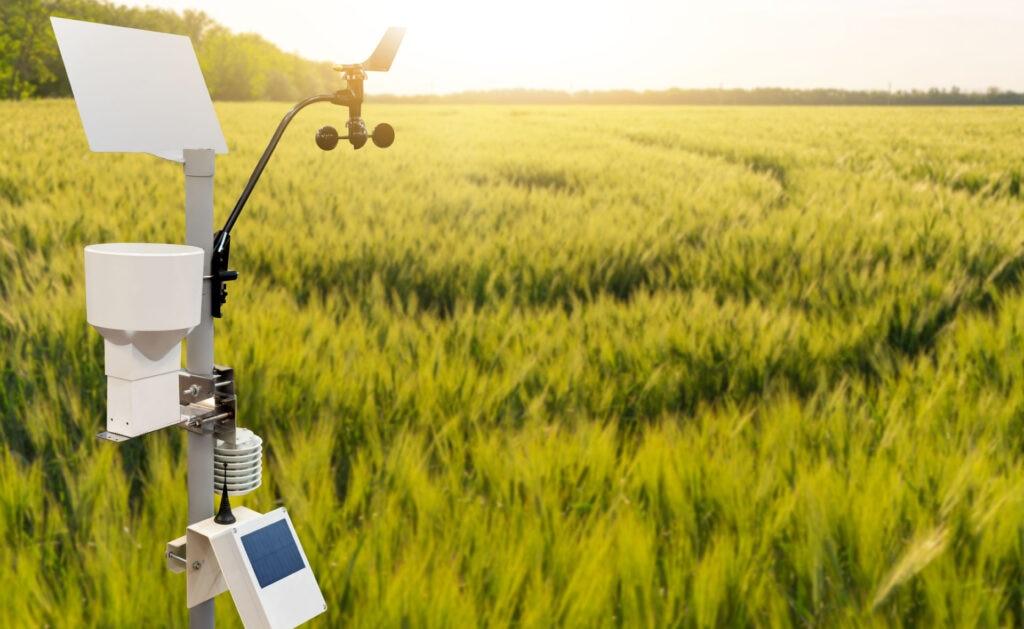 agricultura_precisión_campo-sostenibilidad-naturaleza-plantaciones-cultivos-