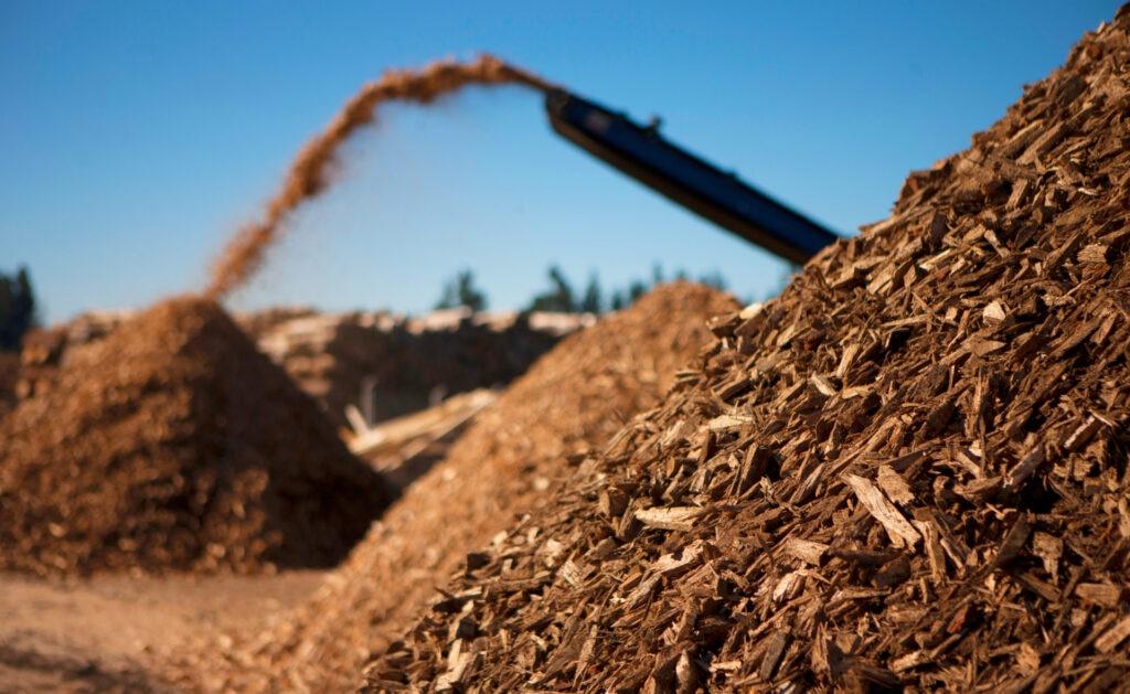 biomasa_sostenibilidad-energia-renovable-bbva