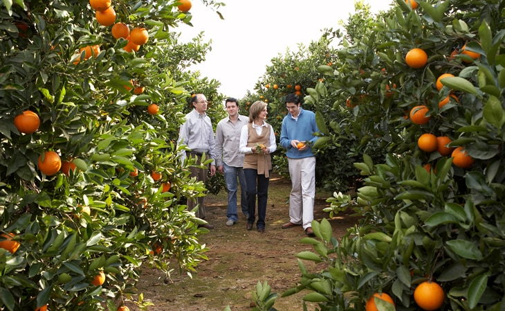 familia-naranjas-lola-bbva-celler-can-roca-productores