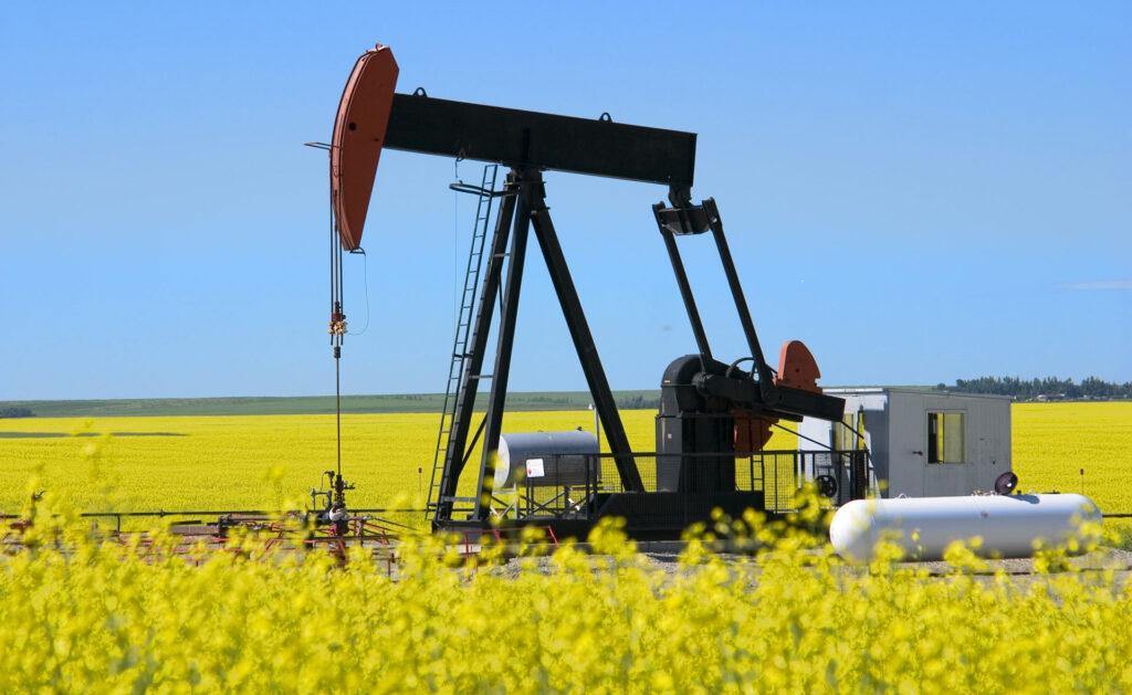 BBVA-biocombustibles-sostenibilidad-renivables-energia-petroleo-medioambiente