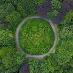 BBVA-economia-sostenibilidad-bosques-circular-compromiso-finanzas-planes-dinero-moneda