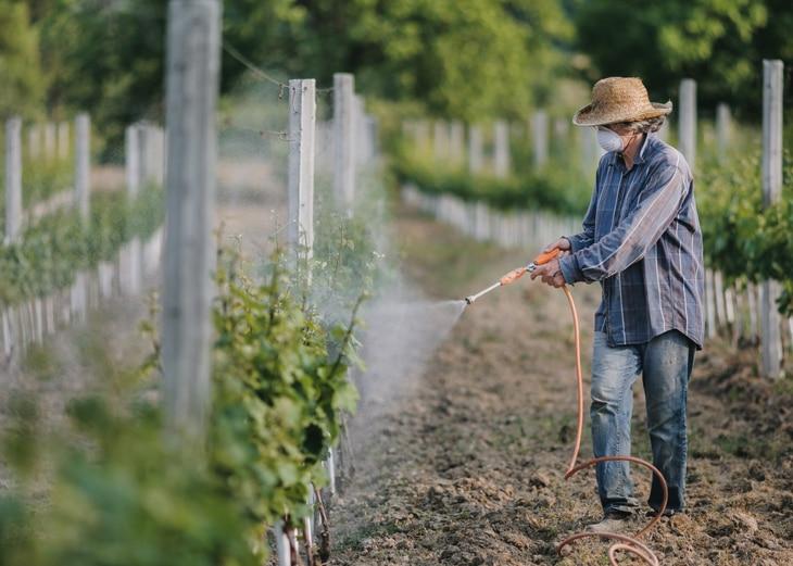 BBVA-horticultura-sostenibilidad-agricultura-alimentacion