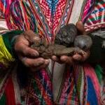 BBVA-podcast-Guamancantac-dios-guano-fundación-peru